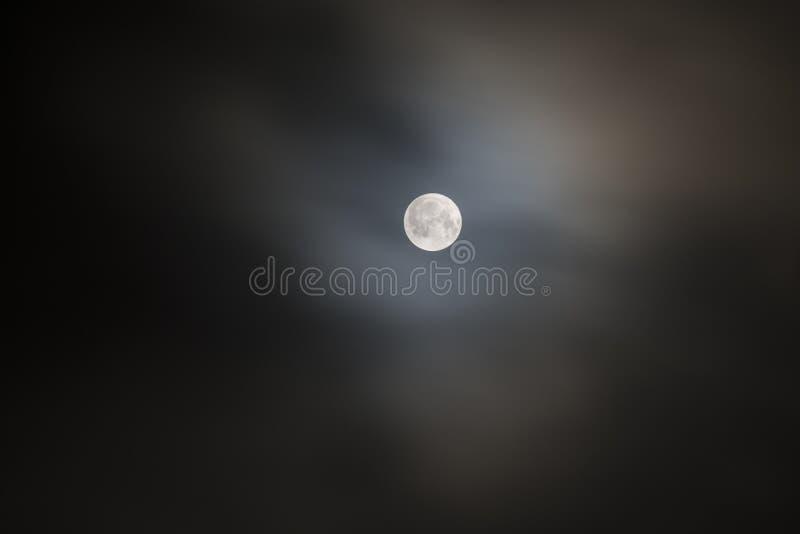 Luna piena eccellente sulla notte fotografia stock libera da diritti