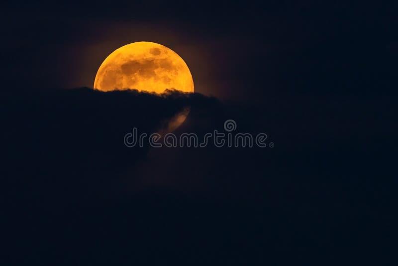 Luna piena gialla luminosa in nuvole fotografia stock libera da diritti