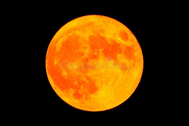 Luna piena rosso sangue della luna fotografia stock