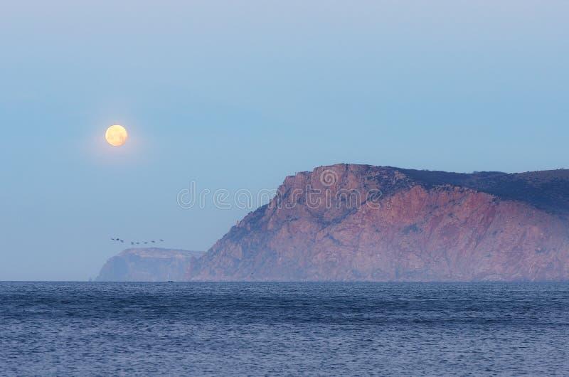 Luna piena sopra il mare fotografie stock libere da diritti