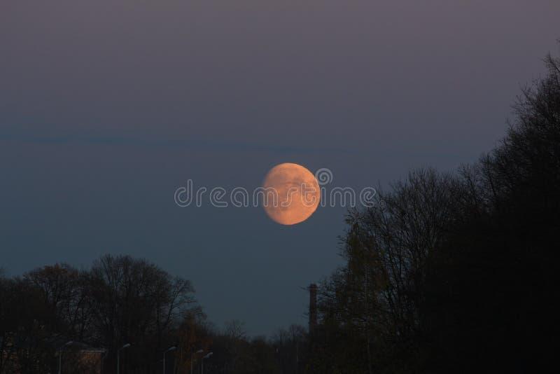 Luna piena sopra il parco ed il tubo fotografia stock libera da diritti