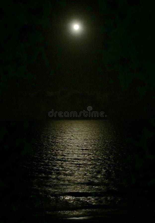 Luna piena sopra l'oceano fotografia di iPhone fotografie stock