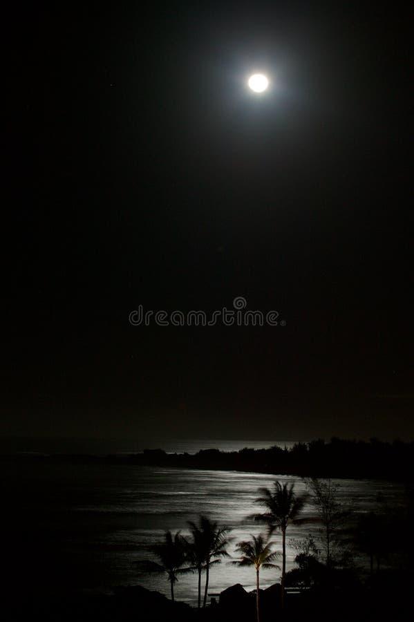 Luna piena sopra la spiaggia dell'oceano alla notte immagine stock libera da diritti