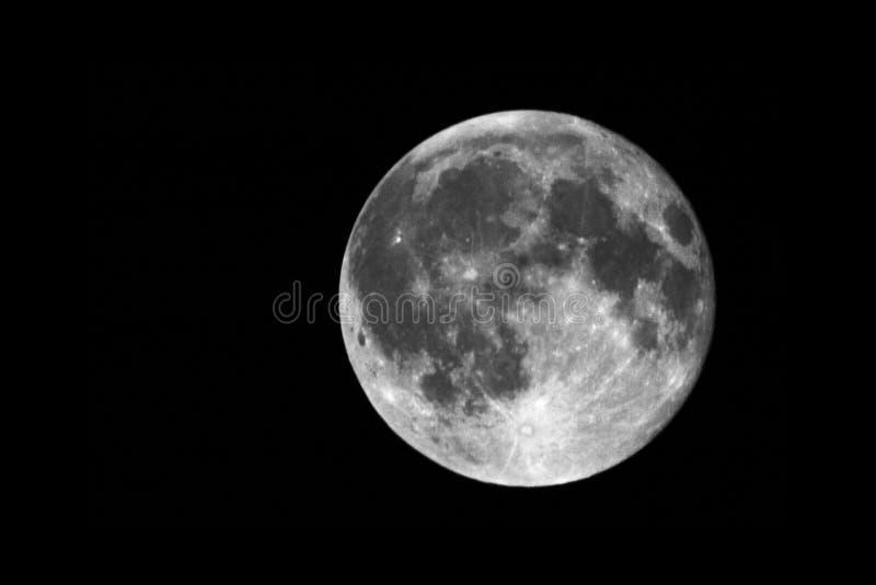 Luna piena sulla notte immagine stock libera da diritti