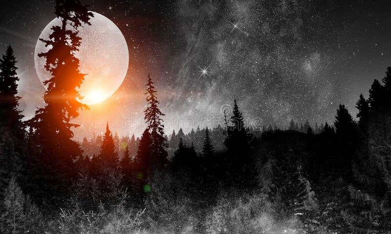 Luna romantica in cielo immagine stock libera da diritti