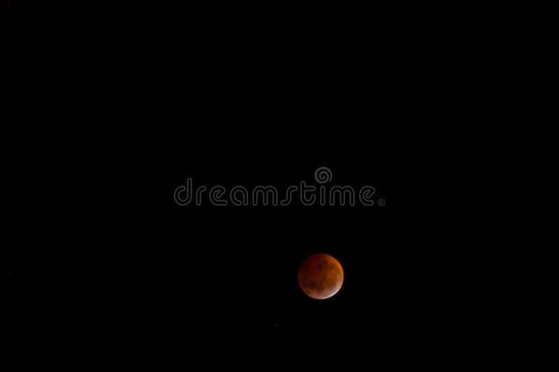 Luna sangrienta: El eclipse lunar total de 2019 fotos de archivo libres de regalías