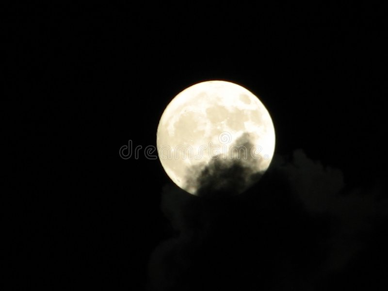 Luna timida fotografia stock libera da diritti