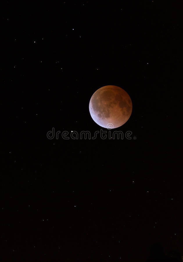 Lunar Eclipse Blood Moon Tetrad Over Midwestern Sky stock photos