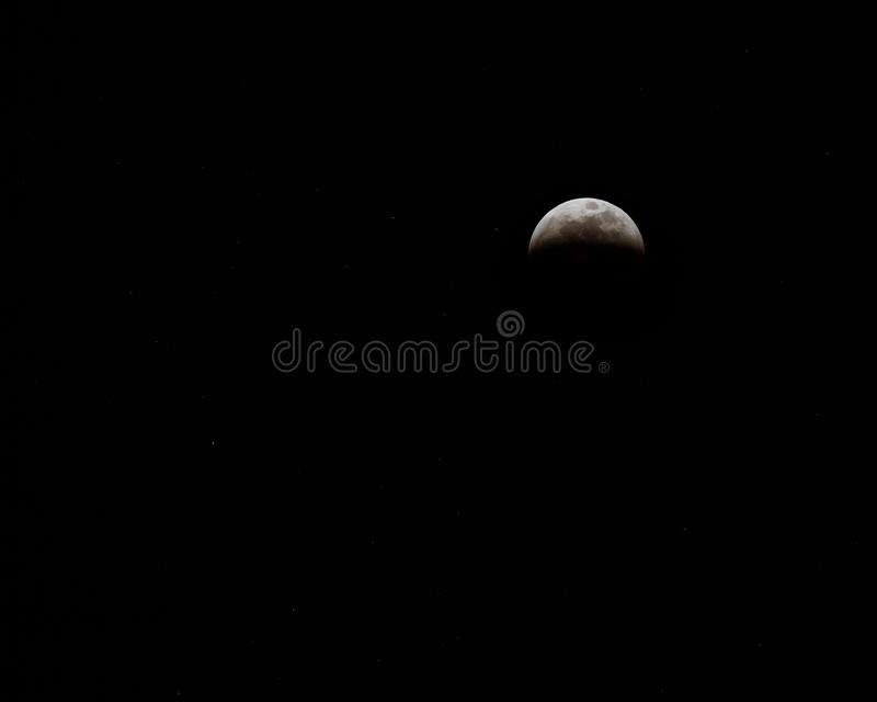 Blood Wolf Moon eclipse 2019 in night sky; royalty free stock image