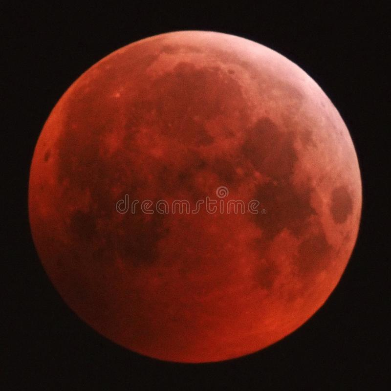 Full Lunar Eclipse and red Moon 21.01.2019 stock images