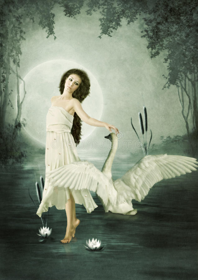 Lunar swan royalty free stock image
