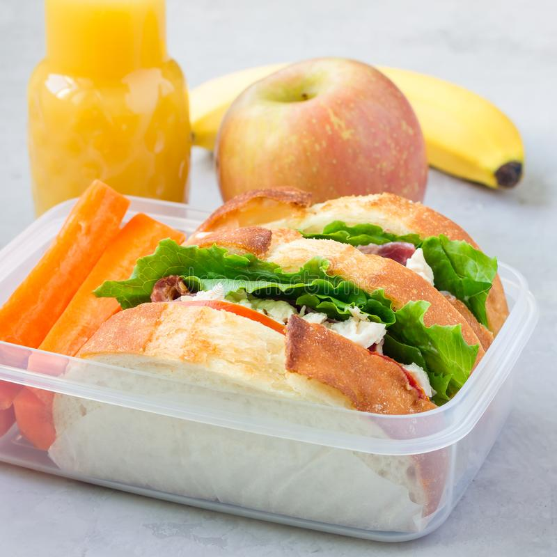 Lunch box with chicken salad sandwiches, served with carrot sticks. Fruits and juice on the background, square format. Lunch box with chicken salad sandwiches royalty free stock image