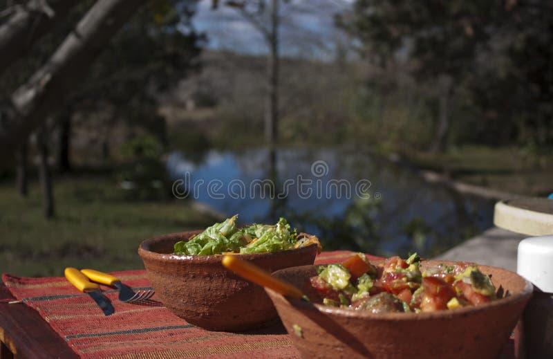 Lunch in de aard stock fotografie