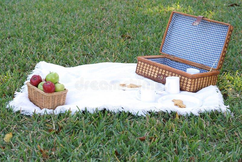 lunch koszykowy piknik obraz stock