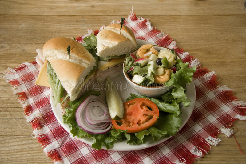 Lunch Plate. A lunch plate with a side of veggies and pasta salad stock image