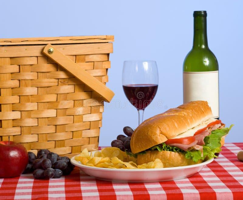 lunchpicknick royaltyfri fotografi