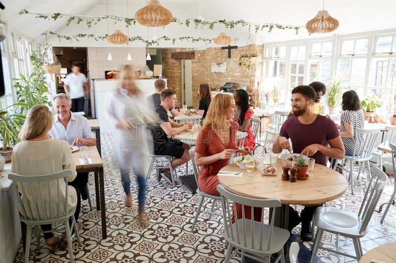 Lunchtime customers eating at a busy restaurant royalty free stock photo