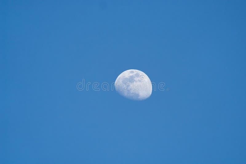 Lune au crépuscule photo stock