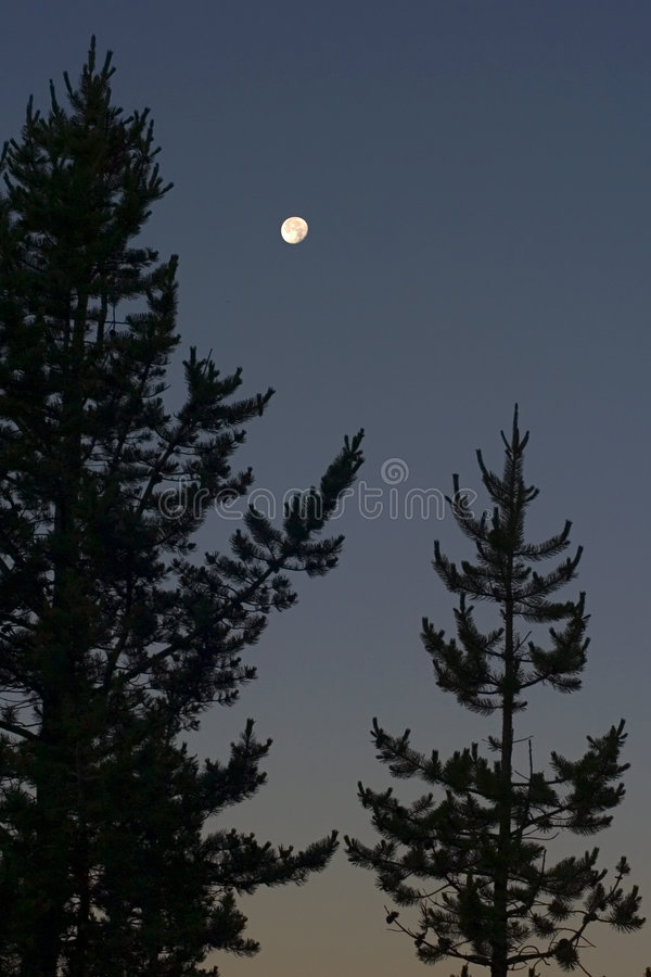 Lune dans le nord-ouest image stock