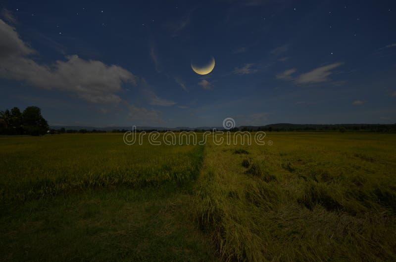 Lune de affaiblissement au-dessus de beau champ le soir de campagne photographie stock libre de droits