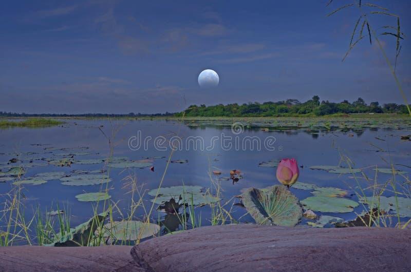 Lune de affaiblissement au-dessus de l'eau dans le lac photo stock