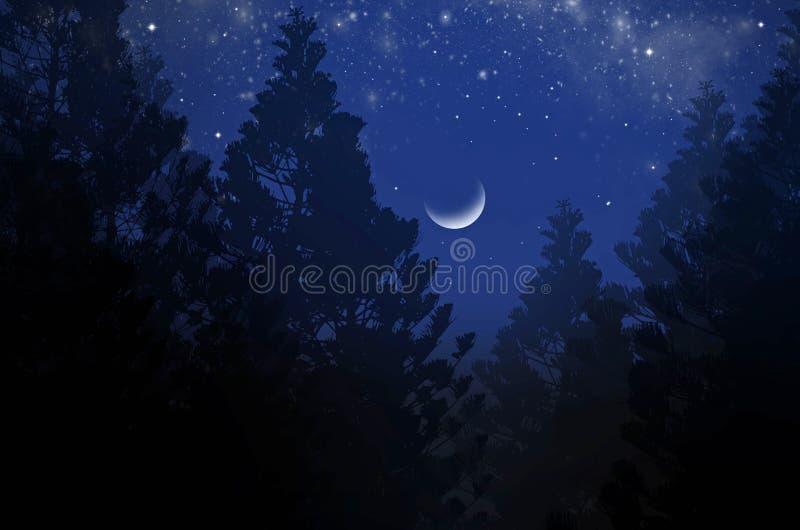 Lune de affaiblissement avec les étoiles lumineuses dans la nuit en croissant photographie stock libre de droits