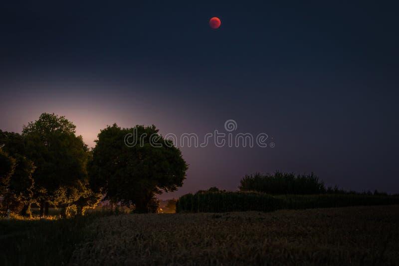 Lune 2018 de sang - toute l'éclipse lunaire et planète Mars le 27 juillet 2018 Paysage de nuit avec les arbres et le contre-jour image stock