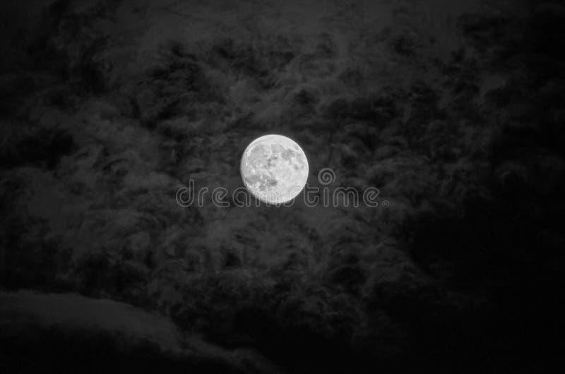 Lune foncée image libre de droits