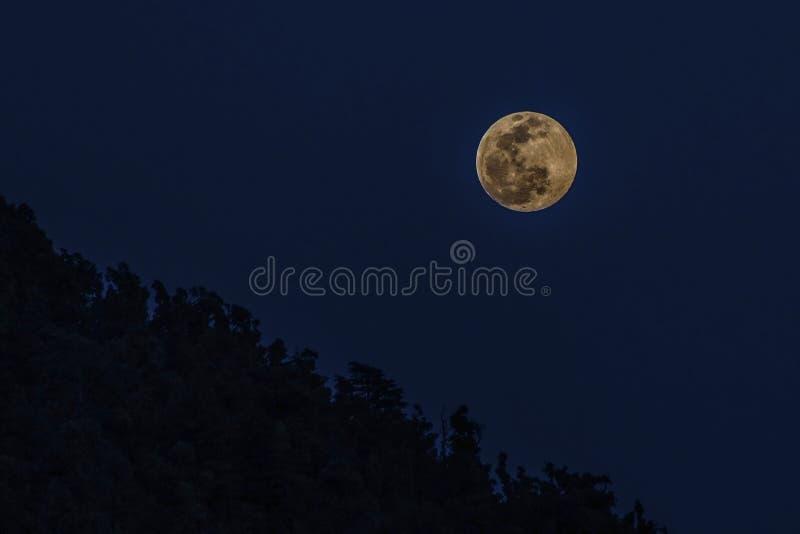 Lune-hausse photographie stock