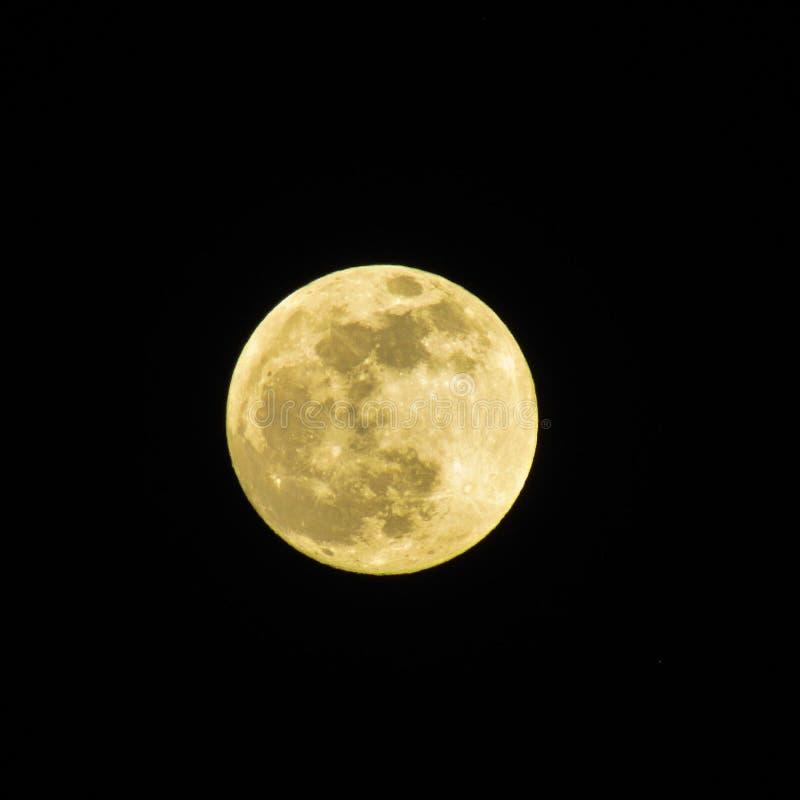 Lune jaune photo libre de droits