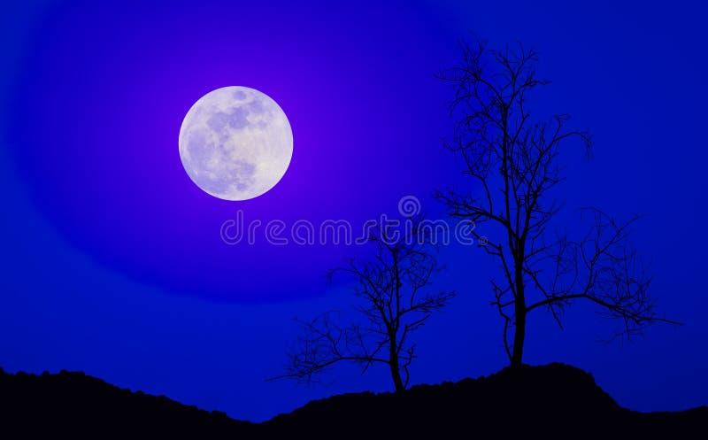Lune noire d'arbres images libres de droits