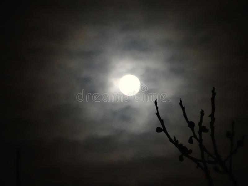 Lune par les nuages images libres de droits
