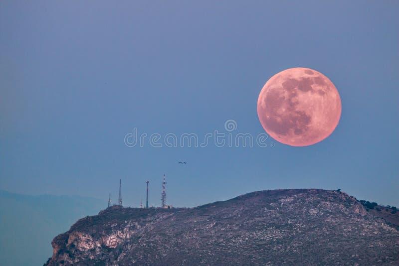 Lune rose au-dessus des antennes images libres de droits