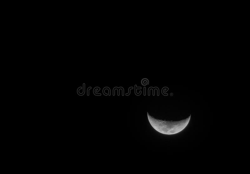 Lune sourie photos libres de droits