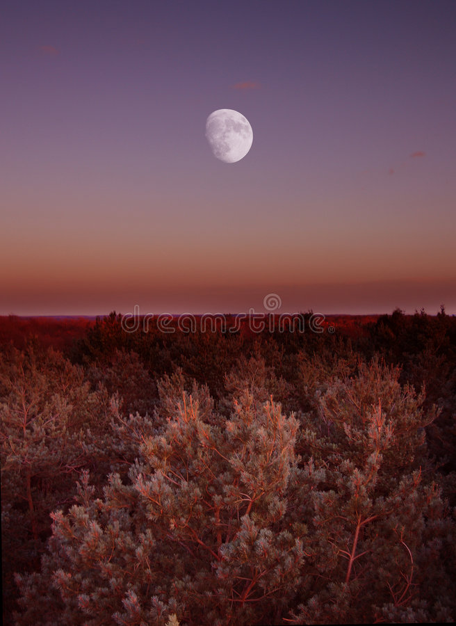 Lune sur l'horizon photographie stock