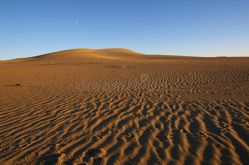 Lune sur le désert photos libres de droits