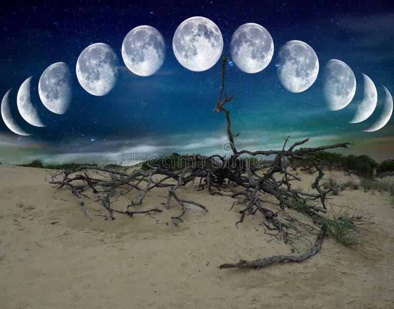Lunes de désert images libres de droits