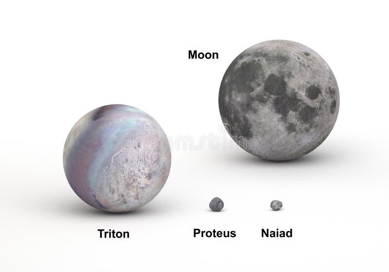 Lunes de Neptune et comparaison de lune de la terre dans la taille photographie stock libre de droits