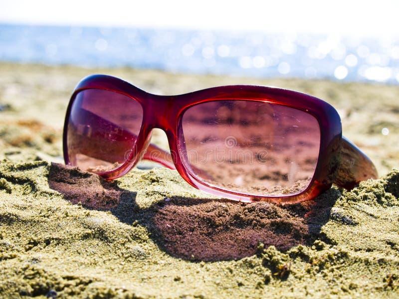 Lunettes de soleil oubliées sur la plage photographie stock libre de droits