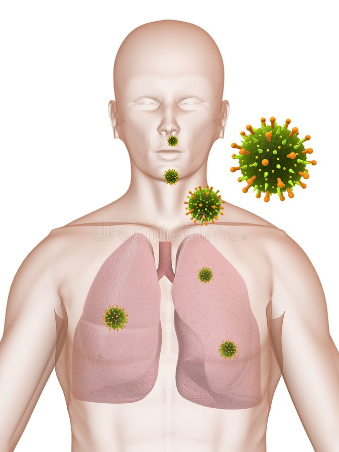 Lung infection. 3d rendered anatomy illustration of a male shape with lung and bacteria stock illustration