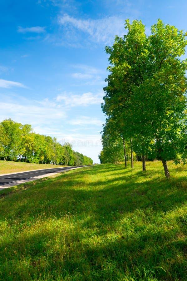 Lunga strada alle colline verdi. fotografie stock