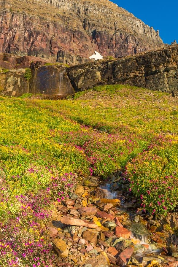 Lungo il Glacier National Park della traccia immagini stock libere da diritti