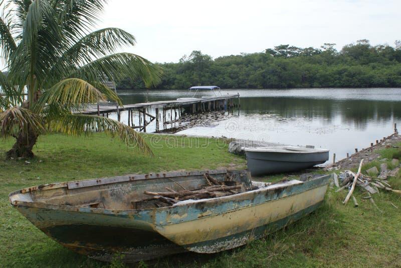 Lungo il nuovo fiume dalla passeggiata arancio, Belize immagine stock