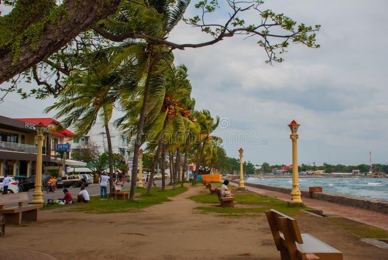 Lungomare con i bei alberi in tempo nuvoloso Dumaguete, Filippine fotografia stock