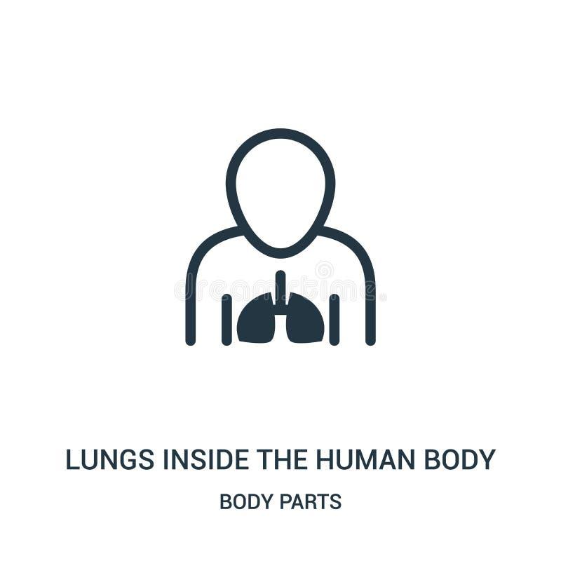 lungor inom människokroppsymbolsvektorn från kroppsdelsamling Tunn linje lungor inom vektorn för människokroppöversiktssymbol vektor illustrationer