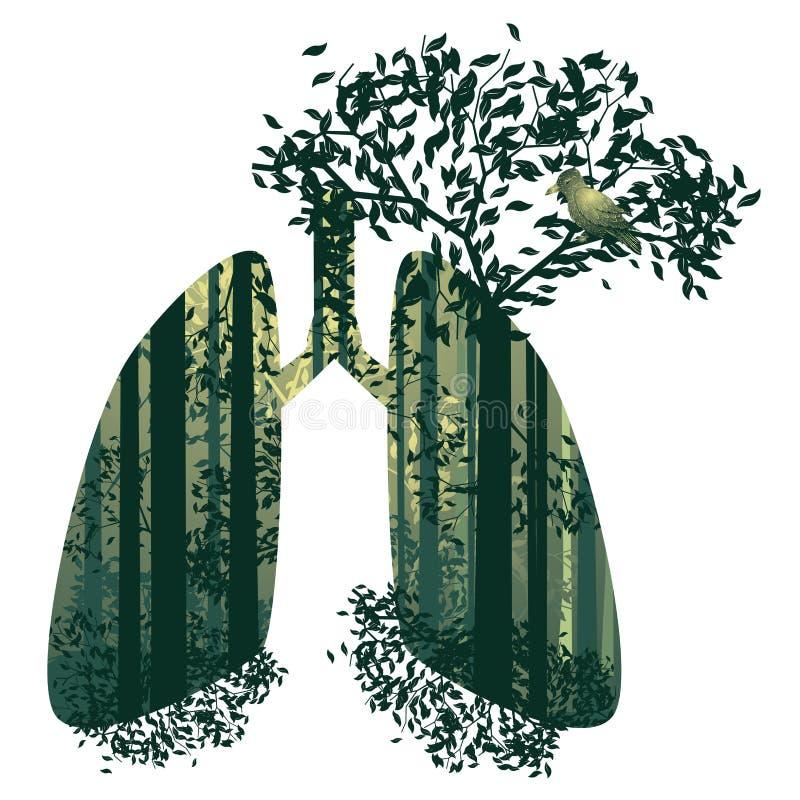 Lungor med skoginsidan vektor illustrationer