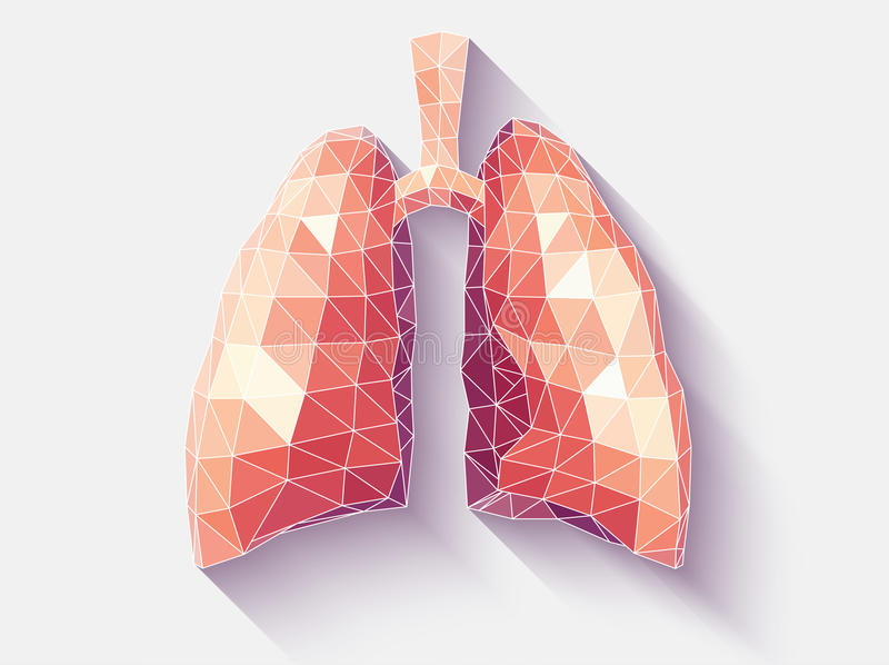 Lungs faceted royalty free stock photos
