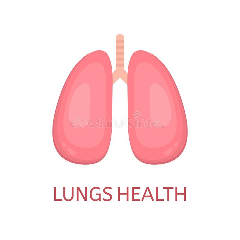 Lungs in flat style isolated on white background. Lungs health concept. Human lungs icon. Internal organ. Respiratory system. Heal stock illustration