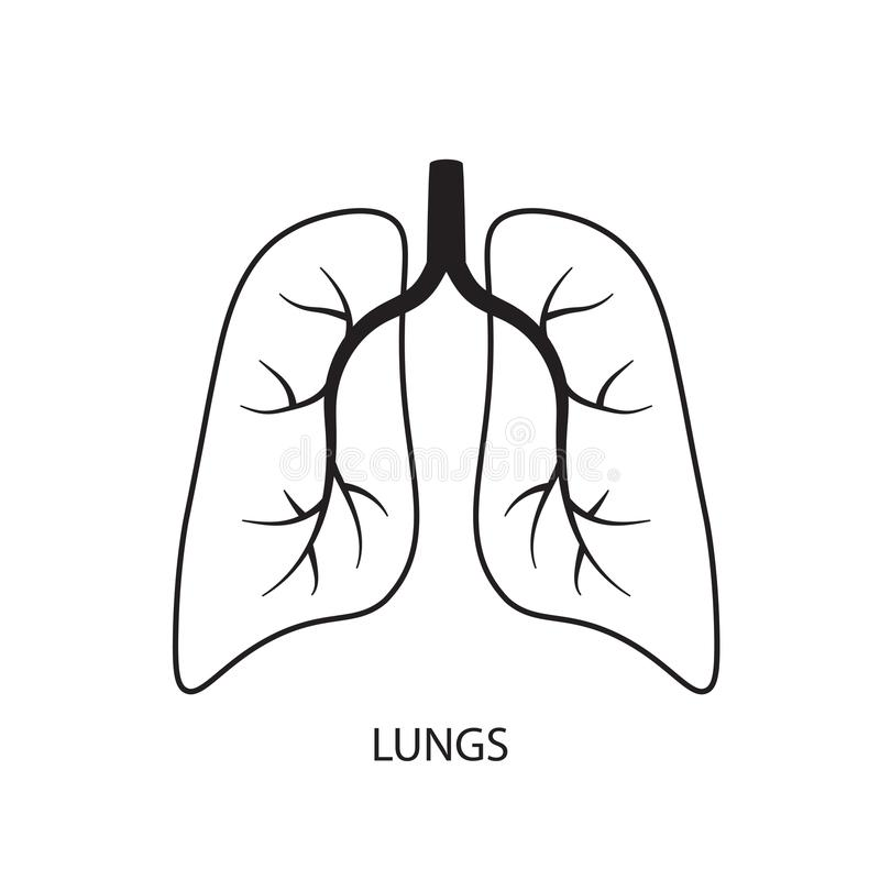 Lungs icon. Black lungs icon- vector illustration royalty free illustration