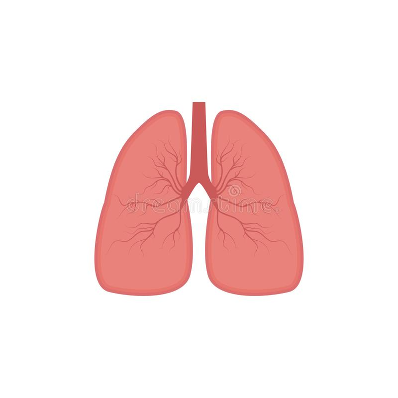 Lungs icon, flat style. Internal organs of the human design element, logo. Anatomy, medicine concept. Healthcare. Isolated on whit vector illustration
